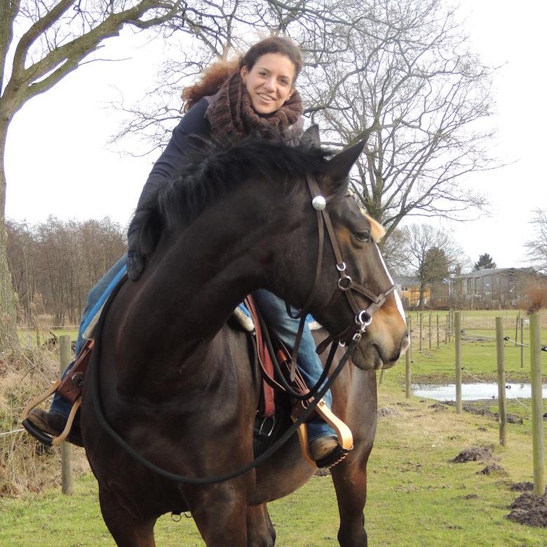 Reiterin mit Pferd